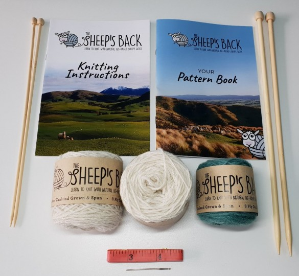 Learn to Knit Kit - Go Ewe!